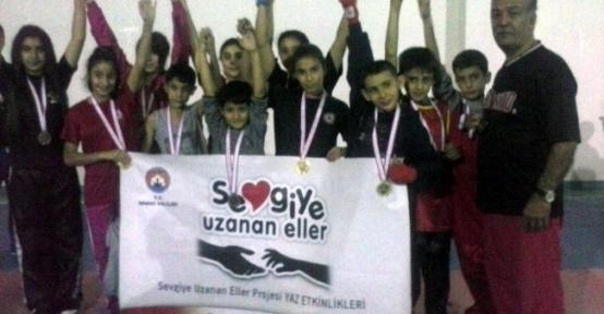 Akdeniz Ve Güney İlleri Wushu Şampiyonası